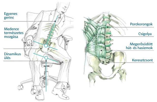 egeszseges-ergonomikus-ules-fitlabda-egeszsegmegorzo-szek-3