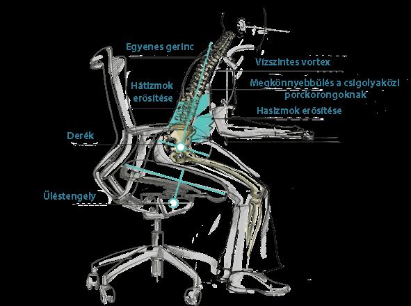 zdrave-sedenie-HU